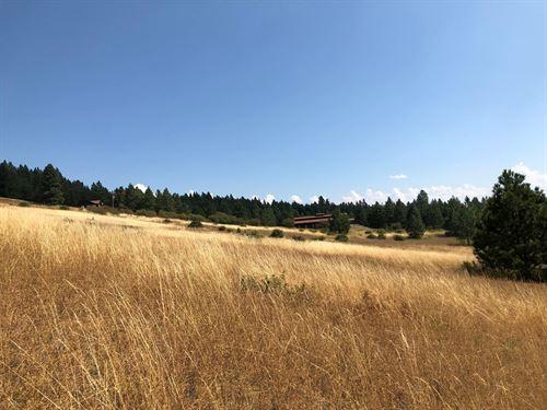 North Idaho Country Living Land : Worley : Kootenai County : Idaho