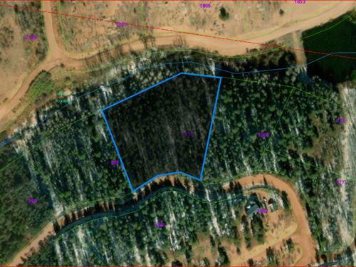 2.25 Acres In Teller County, Co : Cripple Creek : Teller County : Colorado