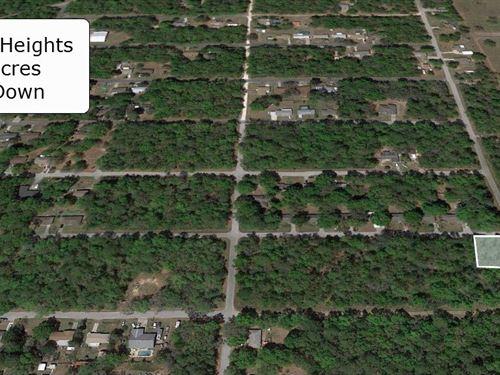 .22 Acre Corner Lot : Crystal River : Citrus County : Florida