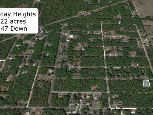 .22 Acre Lot Minutes To Lake Rousse : Crystal River : Citrus County : Florida