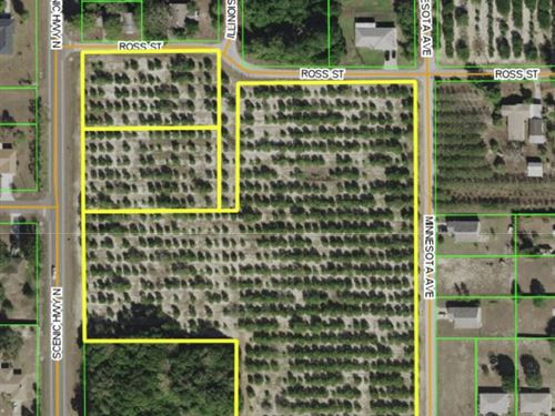 Residential Lot Sites : Babson Park : Polk County : Florida