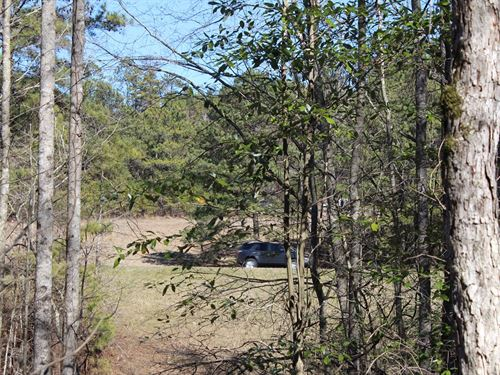 New Photos Wooded Land Autauga CO : Prattville : Autauga County : Alabama