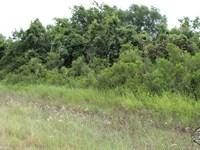 Space You've Never Seen Before : Huntsville : Walker County : Texas