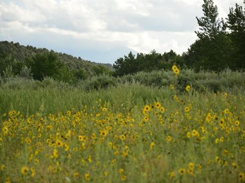3.22 Ac Lot With Access From 346 : Walsenburg : Huerfano County : Colorado
