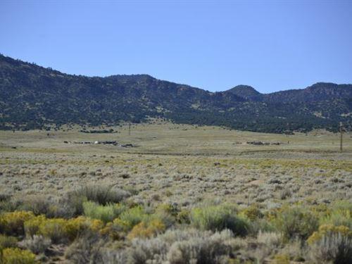 35+ Ac In Saguache Co, Off Of 285 : Moffat : Saguache County : Colorado