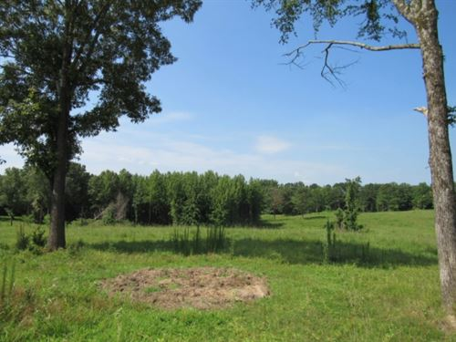 87.7 Acres With A Home In Panola CO : Batesville : Panola County : Mississippi