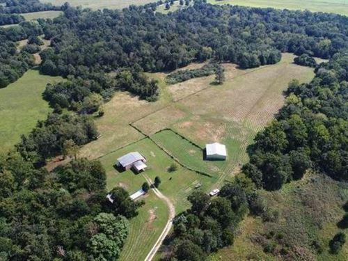 Cabin-Style Home 62 Recreational : Jerico Springs : Cedar County : Missouri