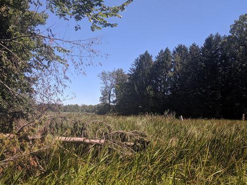 Land Waupaca River, Weyauwega, WI : Weyauwega : Waupaca County : Wisconsin