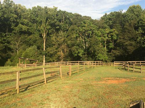 Equestrian Facility, Prime Land : Milton : Fulton County : Georgia