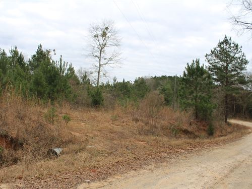 Mobile Home Lot In Troy : Troy : Pike County : Alabama