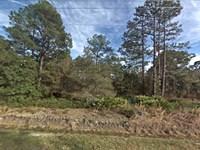 Flagler Estates Mobile Friendly Lot : Hastings : Saint Johns County : Florida