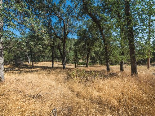 5.09 Acres In Shasta County Ca : Redding : Shasta County : California