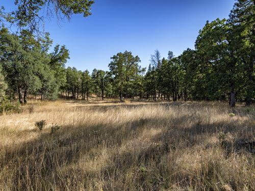 5.14 Acres In Shasta County Ca : Whitmore : Shasta County : California