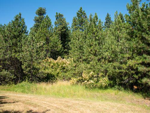 10 Acres In Spokane County Wa : Fairfield : Spokane County : Washington