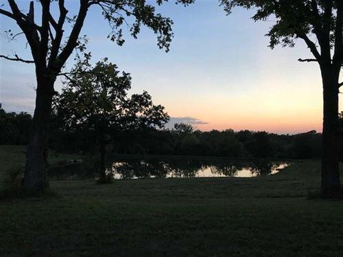 Lafayette 20 : Odessa : Lafayette County : Missouri