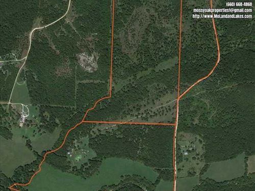 190 Acre Live Creek Bottom Farm HI : Hermitage : Hickory County : Missouri