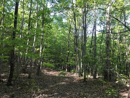 158.85 Acres With Gorgeous Valle : Dayton : Rhea County : Tennessee