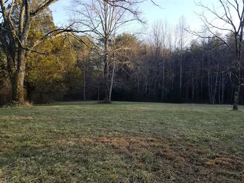 61 Acres Wooded Level Property : Sequatchie : Marion County : Tennessee