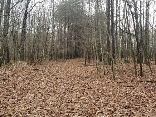 53.30 Acres Beautiful Usable Woo : Sewanee : Marion County : Tennessee