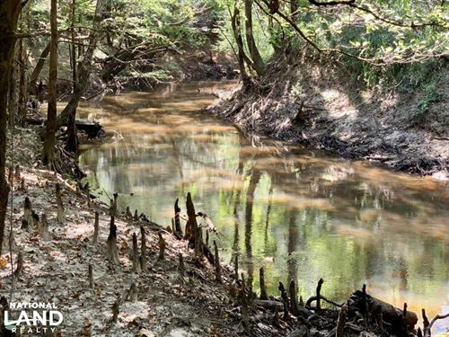 Santa Bogue Creek Frankville Tract : Frankville : Washington County : Alabama