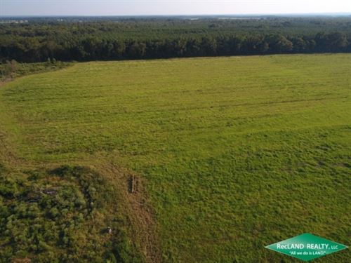 220 Ac, Irrigated Farmland In 3 Tr : Fort Necessity : Franklin Parish : Louisiana