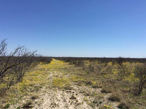 Land Between Hwy 1053 Buena Vista : Imperial : Pecos County : Texas