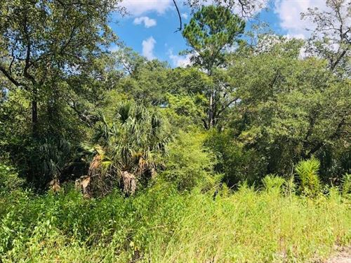 12.26 Acres 778676 : Old Town : Dixie County : Florida