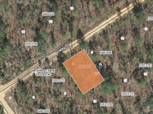 .24 Acre In Putnam County, Florida : Interlachen : Putnam County : Florida