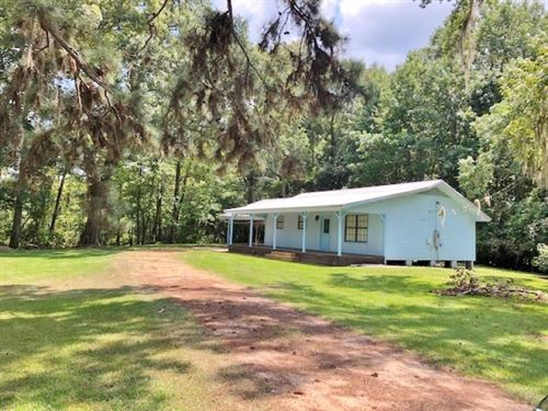 Cabin Adjoining Lake Elias : Columbia : Walthall County : Mississippi
