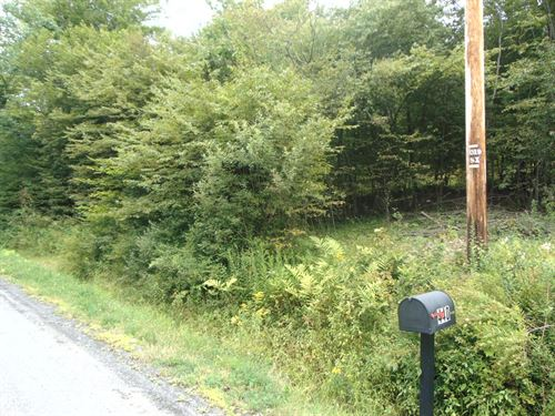19.75 Acres Of Land : Sanford : Broome County : New York