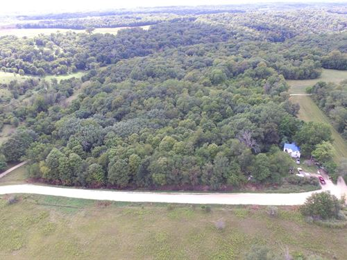 10 Acres of Hunting Timber Privacy : Anamosa : Jones County : Iowa