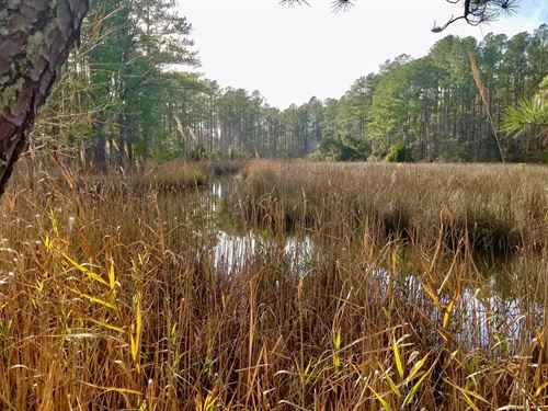 Recreational Property Aurora : Aurora : Beaufort County : North Carolina