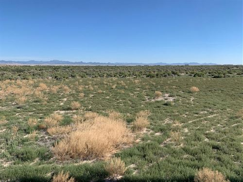40 Acre Lot Ready To Be Your Home : Beryl : Iron County : Utah