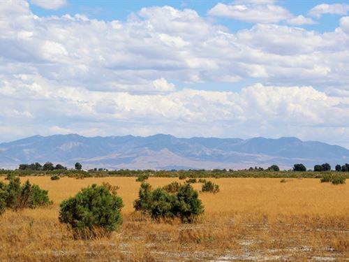 40 Acres Ag Land Ready For Grazing : Delta : Millard County : Utah