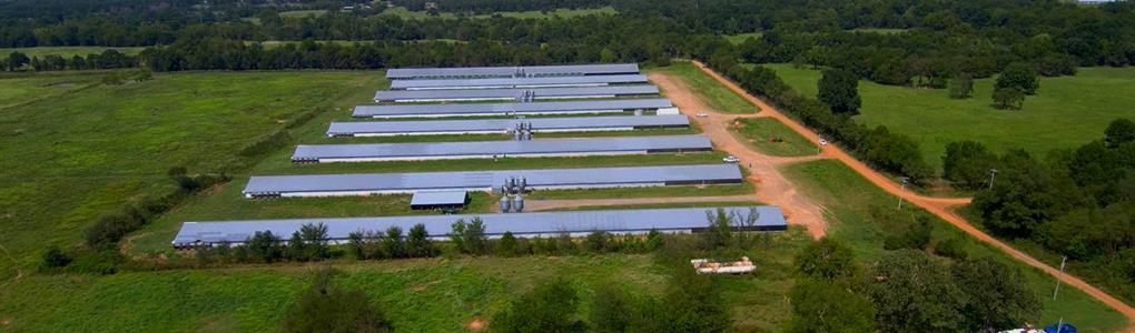 Poultry Farm With 8 Broiler Houses : Poteau : Le Flore County : Oklahoma