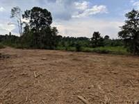 Coldwater Farms, Tract A : Oxford : Calhoun County : Alabama