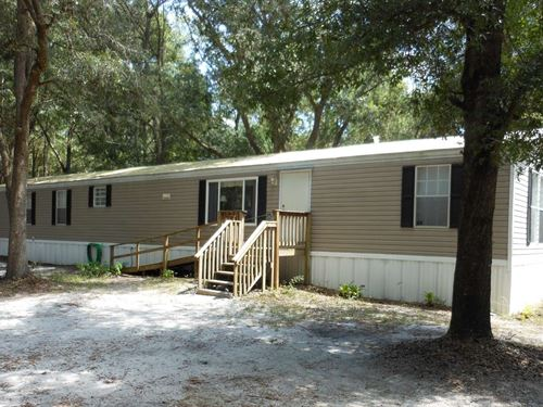 Naturally Wooded Beautiful 4 Acre : O'brien : Suwannee County : Florida