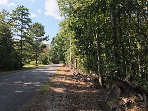 Wooded Home Site : Odenville : Saint Clair County : Alabama