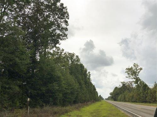 33 Acres Fm 787 : Votaw : Hardin County : Texas