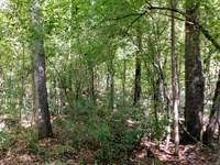 Stonewall Estates, Woods & Creek : Macon : Jones County : Georgia