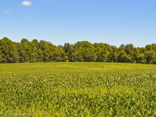 19.99 Ac Near National Battlefield : Cowpens : Spartanburg County : South Carolina