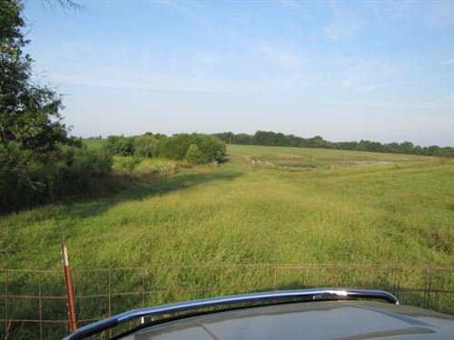 Northern Mo Pasture Land For Sale : Arbela : Scotland County : Missouri