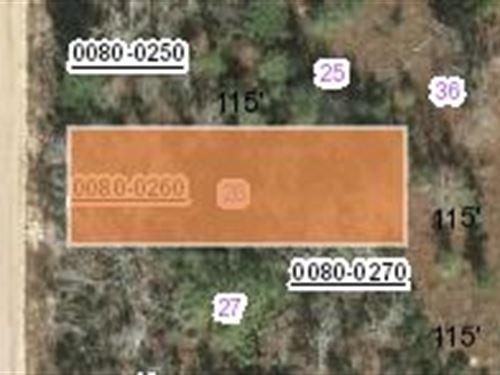 .11 Acres In Putnam County Fl : Interlachen : Putnam County : Florida