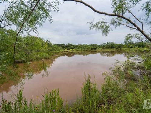 142 Acre Hunting/Recreational Land : Blackwell : Nolan County : Texas
