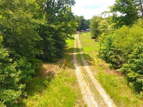 Superb Hunting Investment, Stewart : Dover : Stewart County : Tennessee