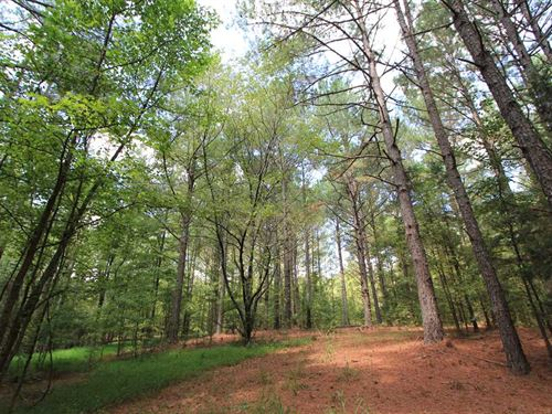 45.49 Waterfront Acres in Monro : Monroe : Union County : North Carolina