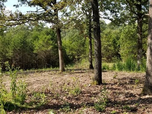 Carroll County Land Berryville : Berryville : Carroll County : Arkansas