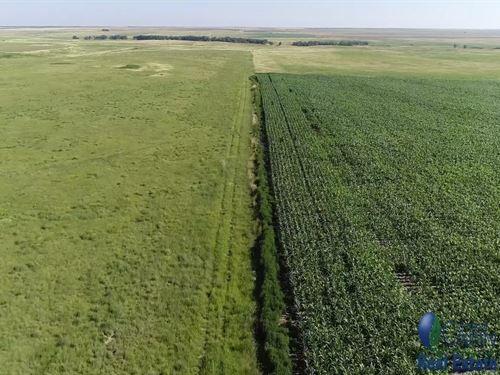 622 Acres Crp Gove Co, Ks, Income : Gove : Kansas