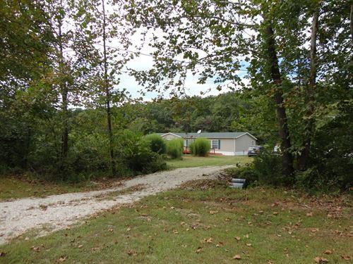 Bamboo Mini Farm Salem, Missouri : Salem : Dent County : Missouri