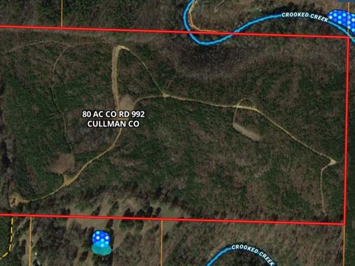 Jones Chapel 80 Acre Tract CO Rd : Jones Chapel : Cullman County : Alabama